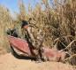 الحشد ينجح في قطع الممرات المائية لداعش في ديالى وصلاح الدين