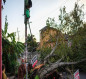 """إعصار """"زيتا"""" يقتل 6 أشخاص ويقطع الكهرباء عن مليوني مواطن في الولايات المتحدة"""